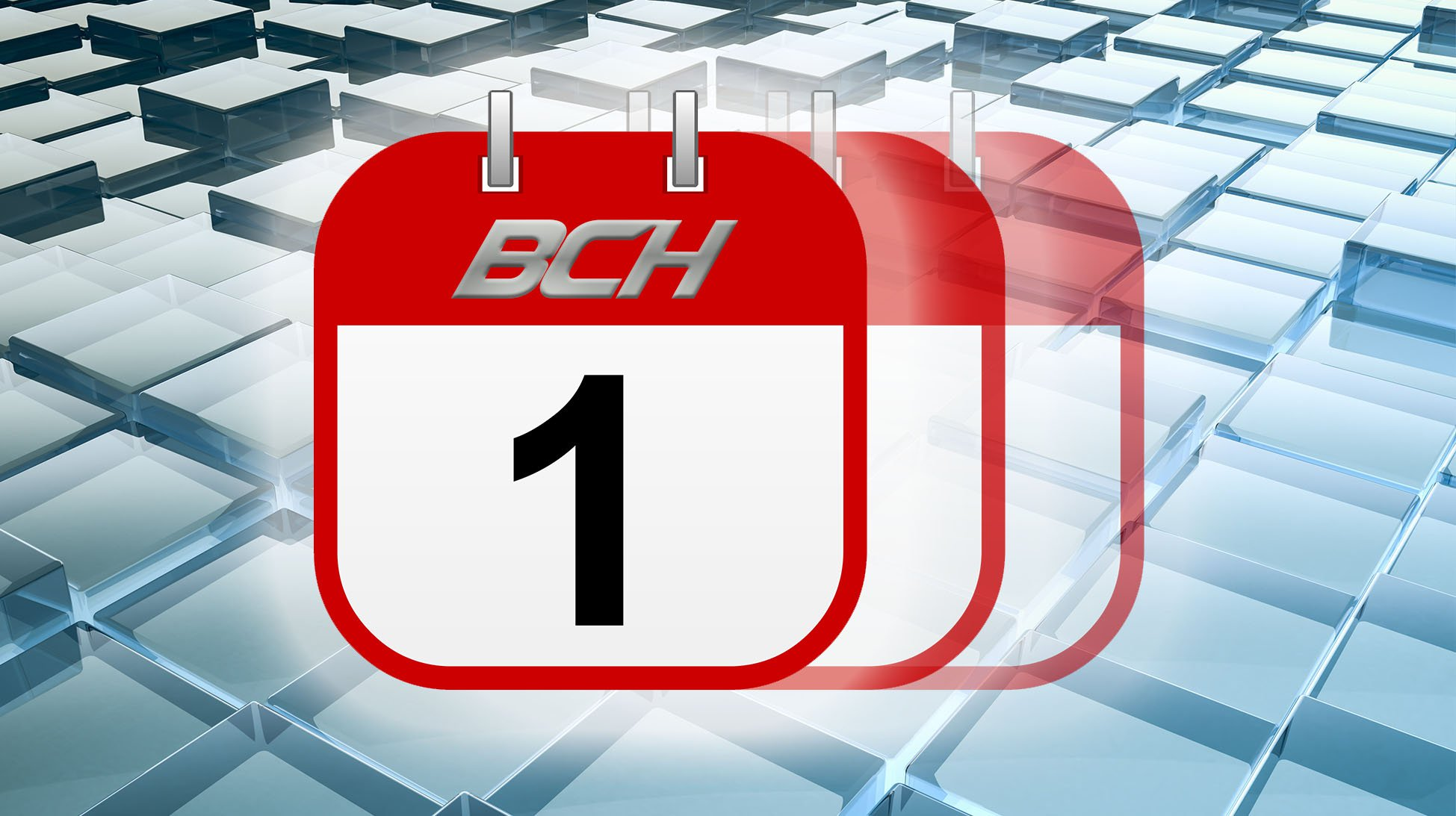 """The Birth of BCH: The First Crazy Days of """"Bitcoin Cash"""""""