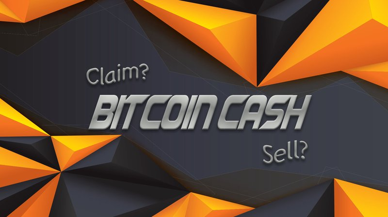 Image result for cash bit coin