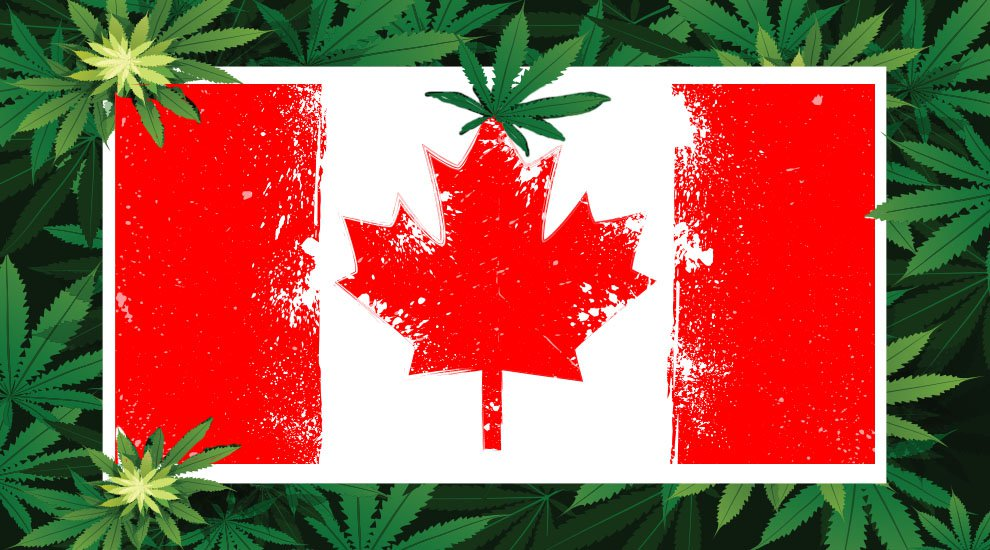 Canadian Blockchain Company Sees Opportunity in Newly Legalized Cannabis