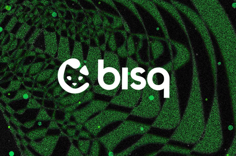 Bisq's Lead Developer Makes Way for DAO to Take Over