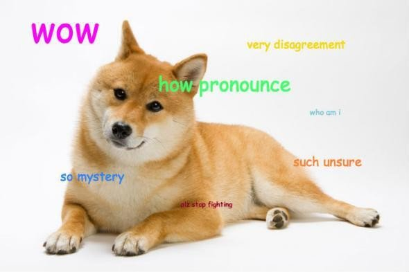 DogeParty: Calling All Shibes