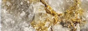 Euro Pacific Precious Metals Embraces Bitcoin