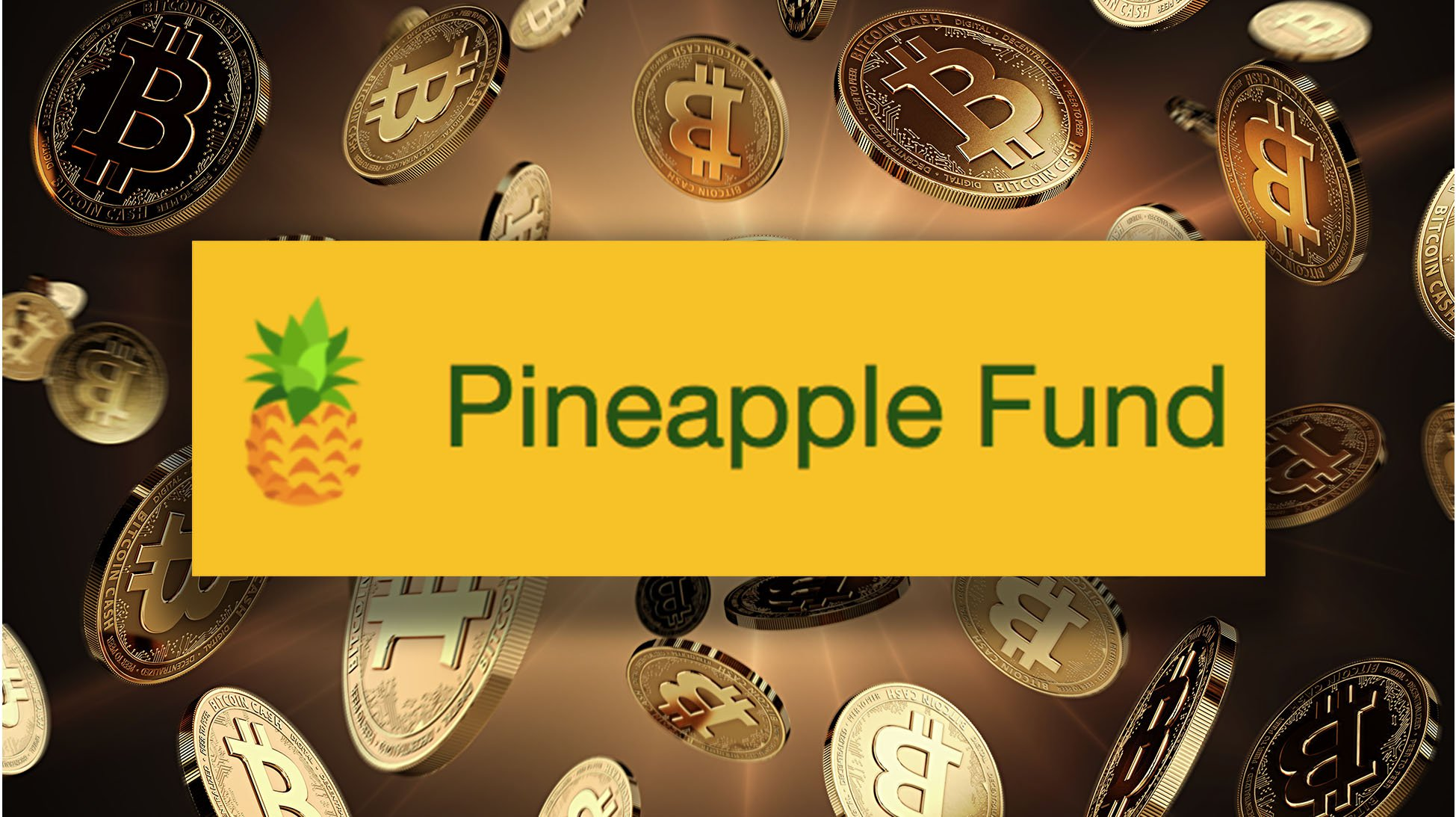 "Meet ""Pine,"" the Bitcoin Philanthropist Who Set Up the $85 Million Pineapple Fund"