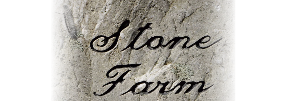 A Visit to Stone Farm, Fitzwilliam, NH